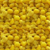 Mosella Prémium Főtt Kukorica Natúr 3kg